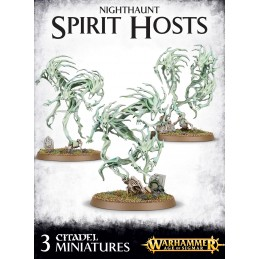 NIGHTHAUNT SPIRIT HOSTS